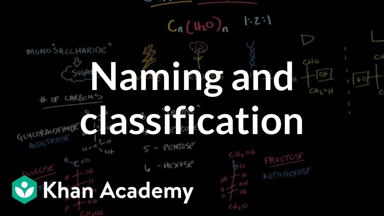 Carbohydrates - naming and classification (video) | Khan Academy
