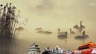 《地理中国》 20171125 百年地理大发现 鸟之谜   CCTV
