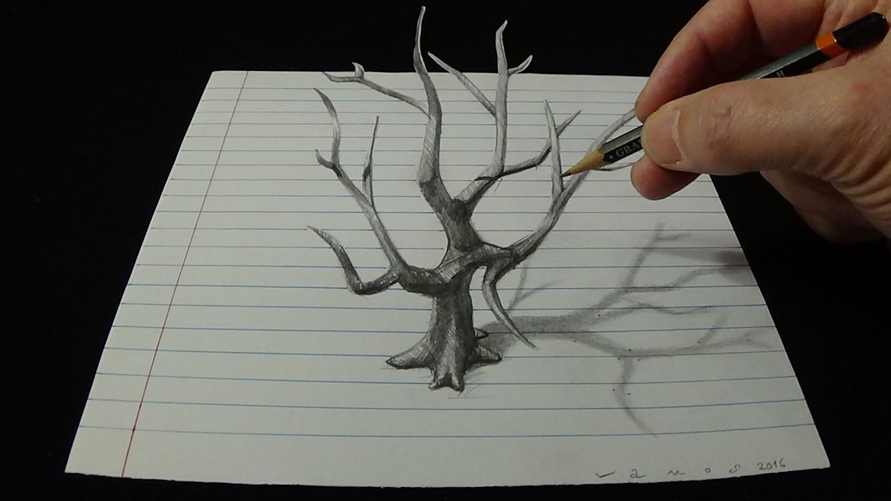 D Lined Paper Drawings : Art d drawing old tree how to draw with pencil