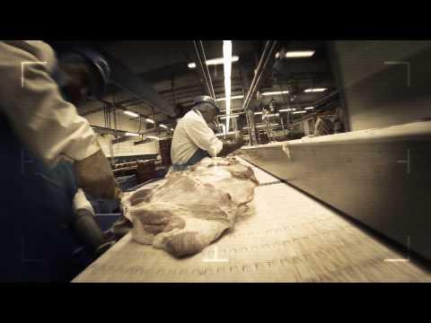 Werken in de vleessector