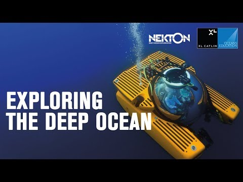 Exploring the deep ocean (360 VIDEO)