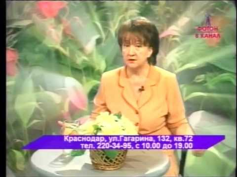 Егорова Надежда Александровна, г.Краснодар - Отзывы