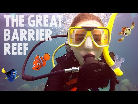 Diving In The GREAT BARRIER REEF - ProDive Cairns Review