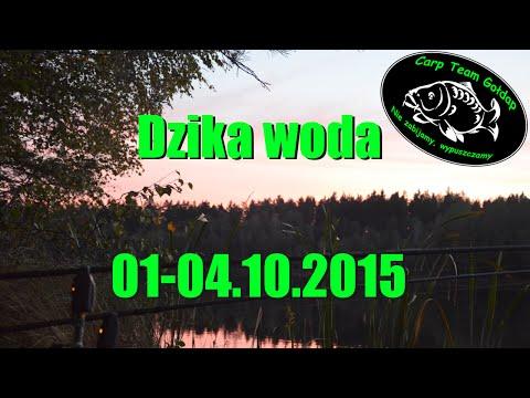 Zasiadka 01-04.10.2015 | Dzika woda podejście 2