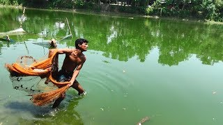 Net Fishing | Catching Fish With Cast Net | Net Fishing in the village (Part-303)