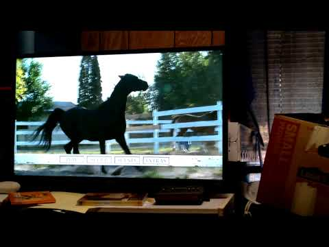 """Download Opening to """"Flicka 3: Country Pride"""" 2012 DVD"""