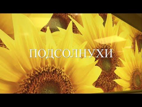 Однокомнатные квартиры на сутки в Москве - снять 1