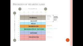 WEBINAR: Audiological Evaluations, Findings and Recommendations: A Parent's Guide