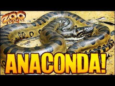 Zoo Tycoon 2 | ANACONDAS IN THE ZOO (The Aquarium Part 10)