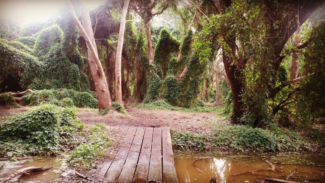 Perth\'s Secret Garden Wonderland // Myra Peggy Rose - YouTube