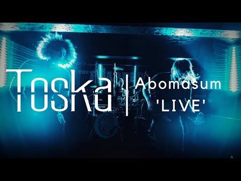 Toska Abomasum 'LIVE' | Victory Amps VX100