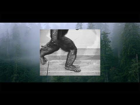S/LAB ME:sh - De Lucy à Kilian, le documentaire | Salomon