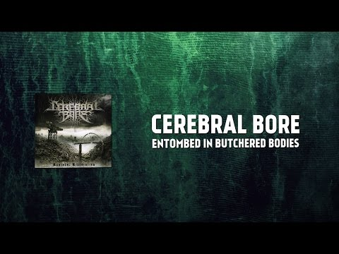 Cerebral Bore - Entombed in Butchered Bodies (guitar cover)