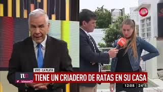 La Plata: Tiene un criadero de ratas en su casa