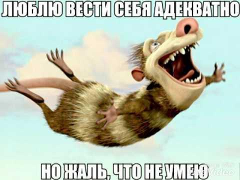 Мемы || часть|