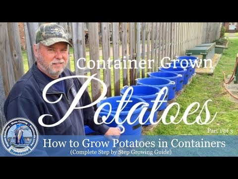 How To Plant Potatoes In Containers Complete Step by Step Growing Guide Part 1 of 3