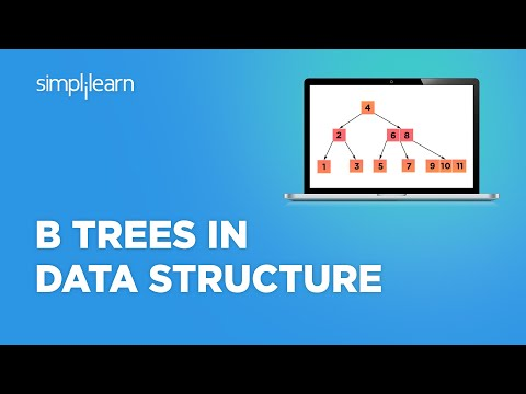 The Best Guide You'll Ever Need to Understand B-Tree in Data Structure