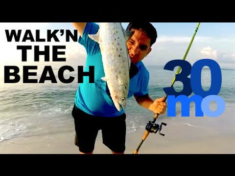 Spanish Mackerel & Blue Fish - Surf Fishing Pensacola Beach Florida