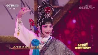 [2020新年戏曲晚会]京剧《廉锦枫》 表演者:白金| CCTV戏曲