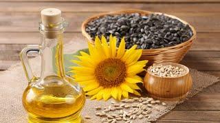 Растительное масло, как хранить долго в домашних условиях | Полезные Советы хозяйке