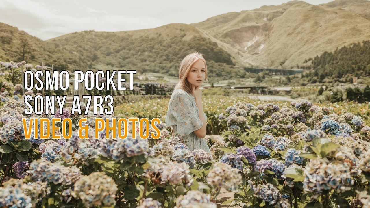 【廢片系列02 】 OSMO POCKET  Portrait   BTS   陽明山   阿神攝影