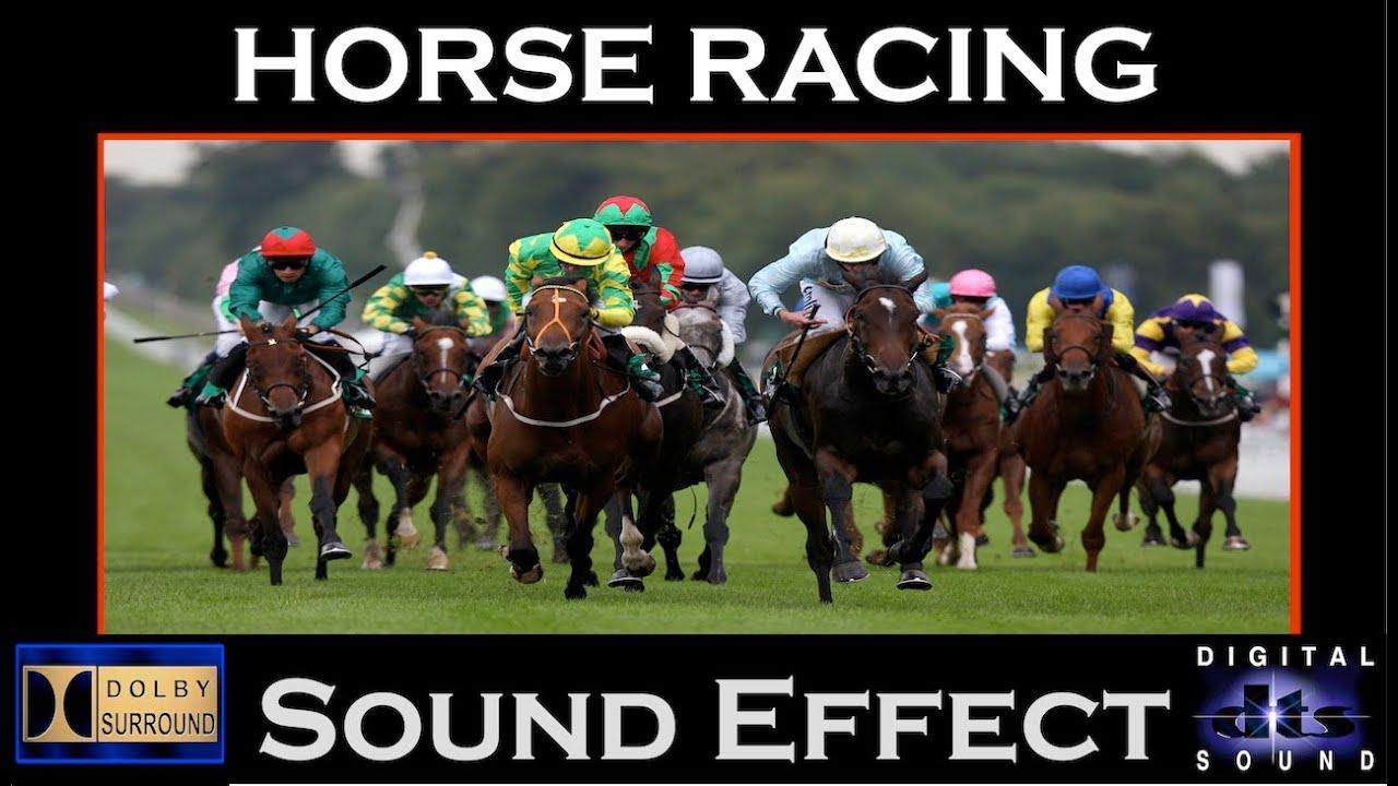 horse sound racing effect audio