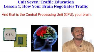 HSC English First Paper Unit 2 Lesson 1 Traffic Education How Your Brain Negotiates Traffic