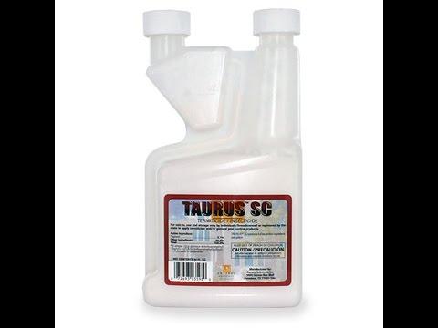 Taurus Sc Termidor Generic Unboxing Review For Ant Extermination