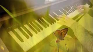 Ludovico Einaudi Seven Days Walking, Day 1 Golden Butterflies