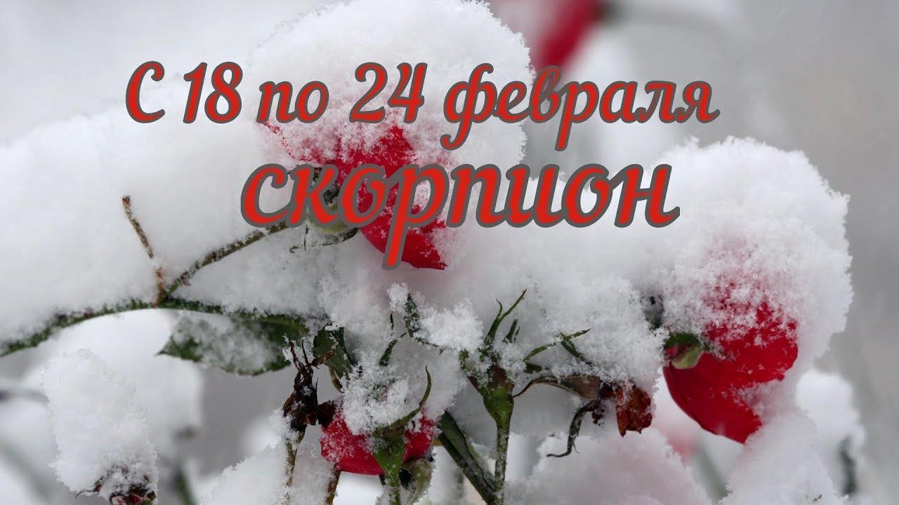 Таро расклад Скорпион с 18 по 24 февраля 2019 ,прогноз таро гадание на картах колода 78 дверей