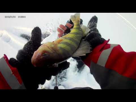 Ice Fishing Lake Carmi Vermont