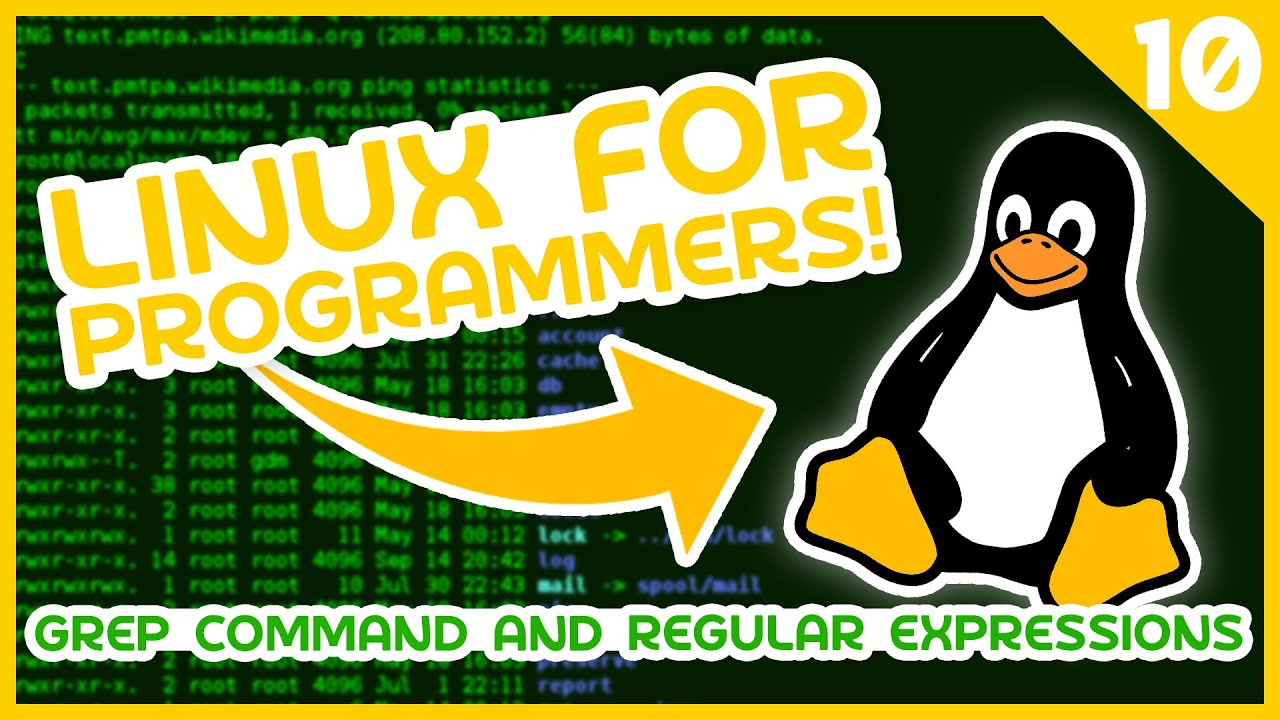Linux for Programmers - Grep Command & Regular Expressions