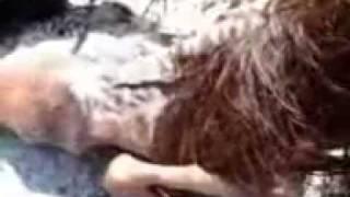 Download Video VIDEO MESUM  LUNA MAYA DAN ARIEL PETERPAN MP3 3GP MP4