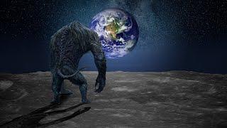 D'étranges créatures vues dans l'espace.