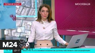 Смотреть видео Президент проводит первую встречу с членами рабочей группы по изменению Конституции - Москва 24 онлайн