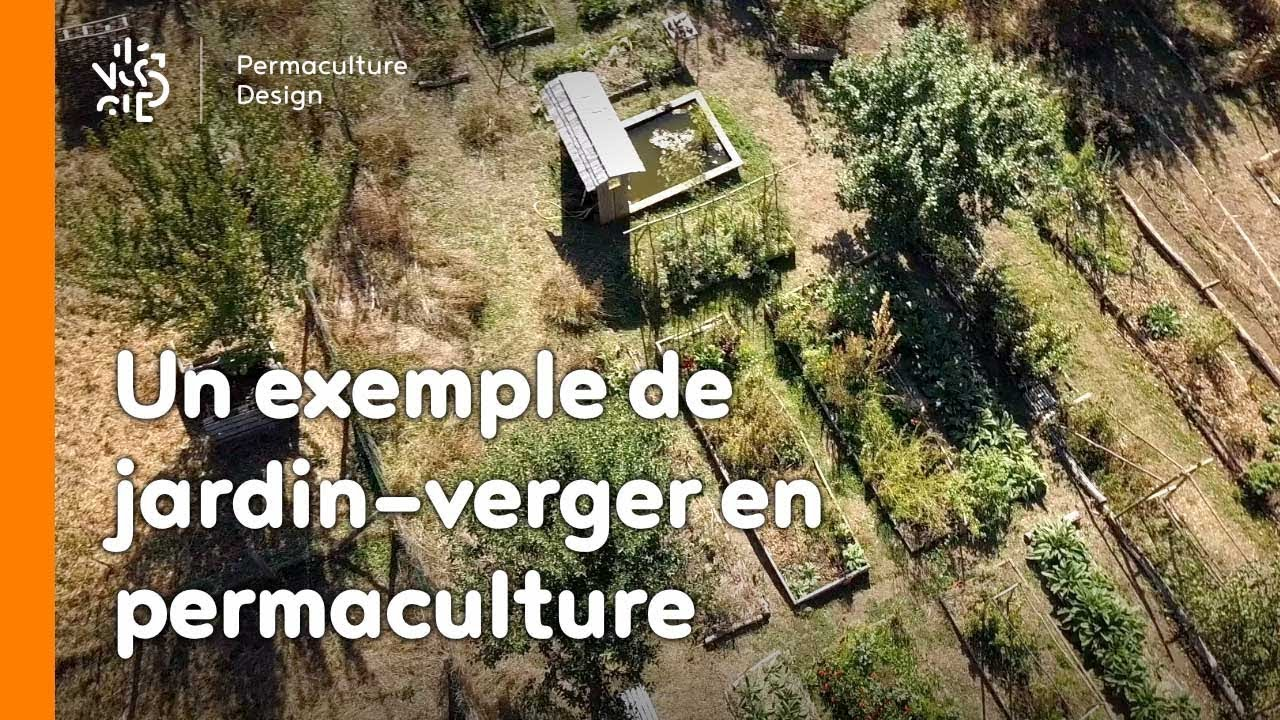 La Minute Permaculture 21 Un Exemple De Jardin Verger Youtube