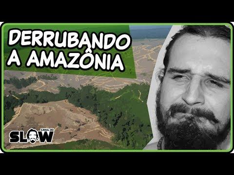 Download Youtube: AMAZÔNIA, VAMOS DERRUBAR?! | Canal do Slow
