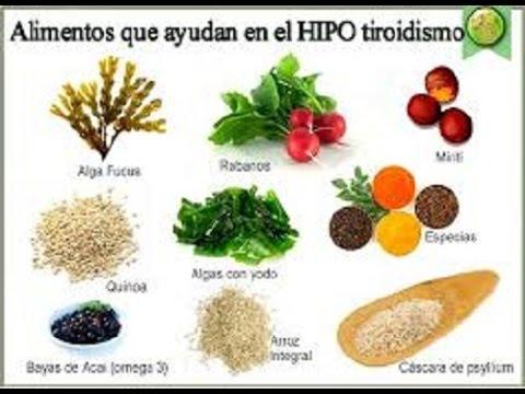 Alimentos que ayudan a la tiroides youtube - Alimentos con probioticos y prebioticos ...