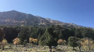 Oludeniz Babadag Fethiye Kamp ( Camp ) alanı Oludeniz Babadag Fethiye Camping Site