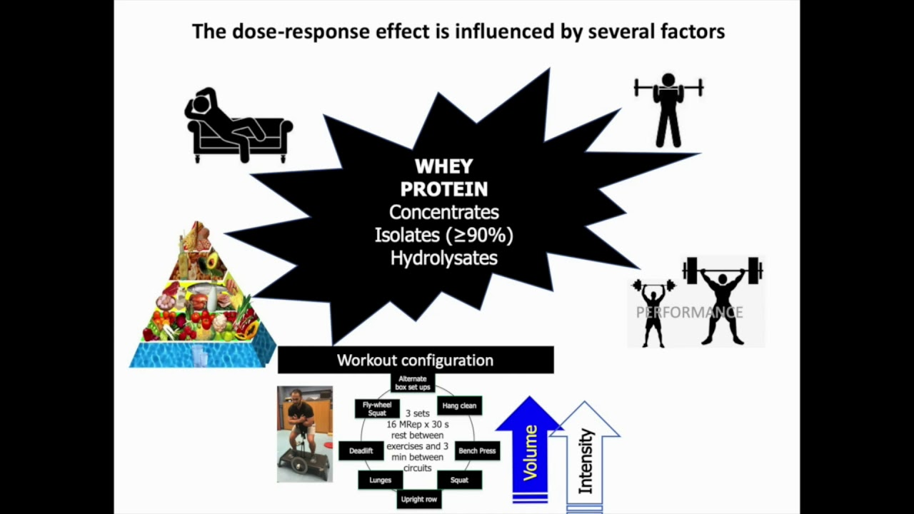 Full text] Whey protein supplementation and muscle mass
