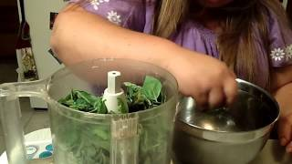 Homemade Basil Pesto And Just Let It Grow - The Wisconsin Vegetable Gardener Extra 66
