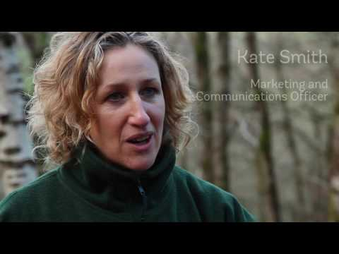 WAKEWOOD - WOODLAND TRUST - RESTORING ANCIENT WOODLAND - Part 1