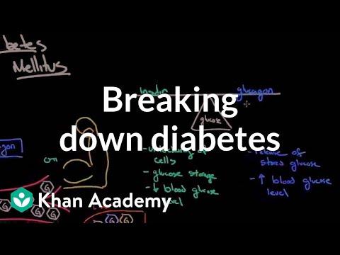 Breaking Down Diabetes | Endocrine System Diseases | NCLEX-RN | Khan Academy