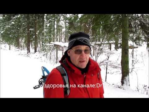 book/ Snegurochka _ Ostrovskiy -