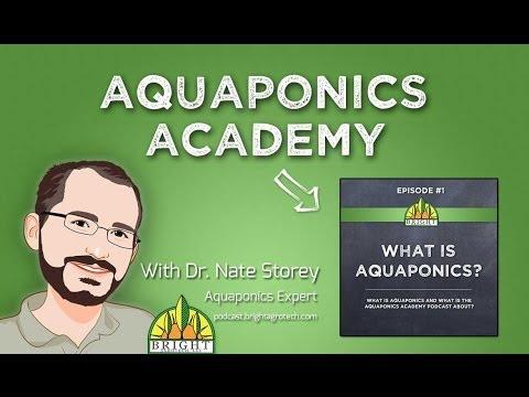 Aquaponics, Part 1: What is It?