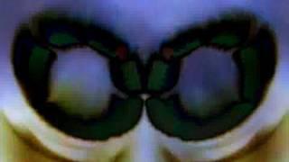 European son - The Velvet Underground
