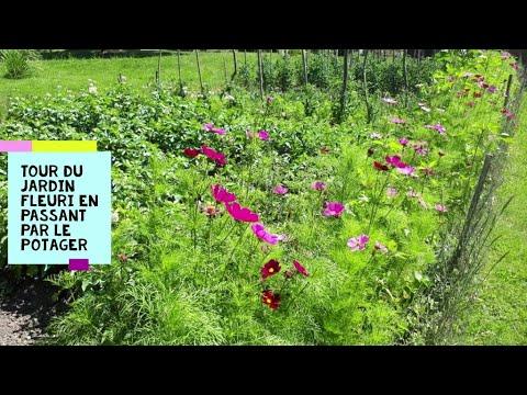 tour du jardin fleuri en passant par le potager