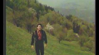 Знов я у гори іду - Назарій Яремчук