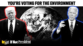 You're Voting for the Environment   If Not President