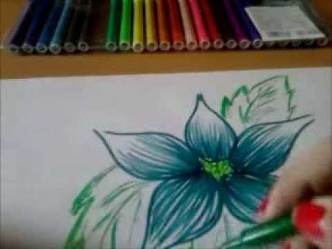 tropical flower drawing